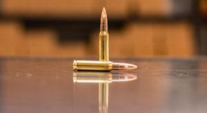 300 Blackout Subsonic Target Ammunition | Discreet Ballistics
